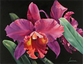 Oleo de orquideas