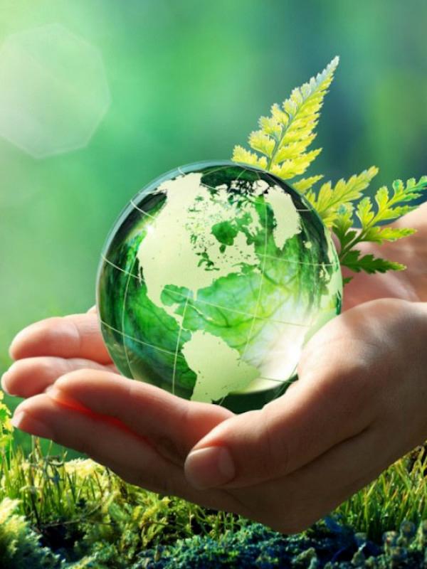 Cuidado de Medio Ambiente