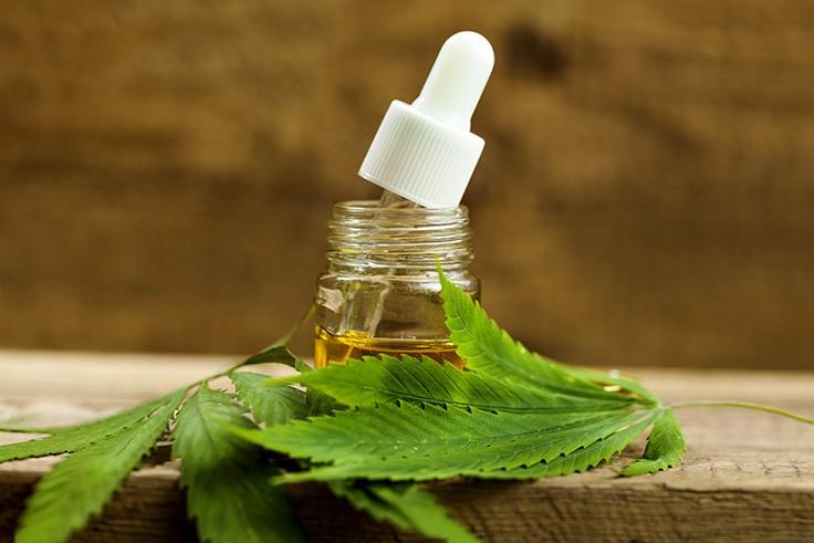 CBD aceite y hojas