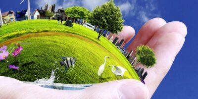 El Medio Ambiente está en nuestras manos